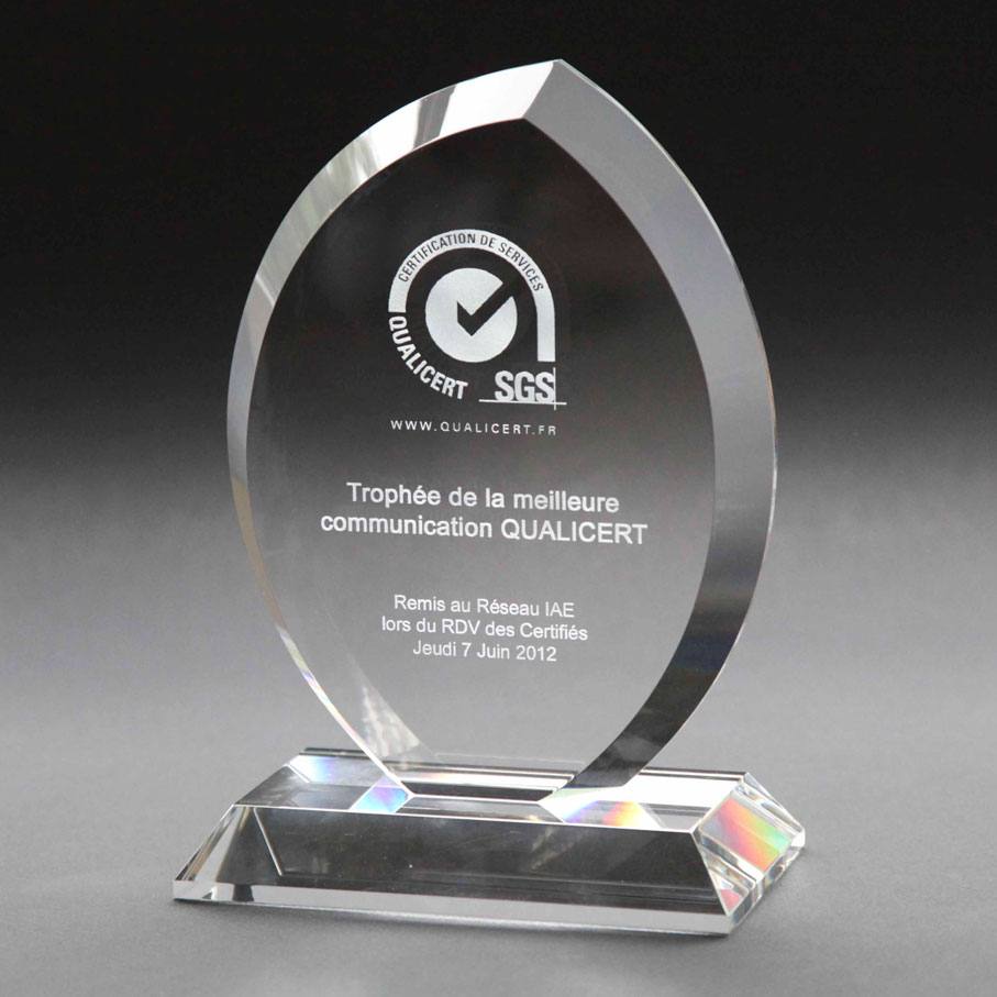 Oval shaped clear glass award